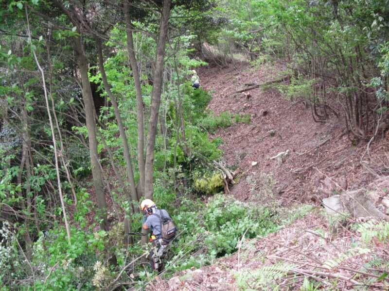 2021年度伐採関係工事